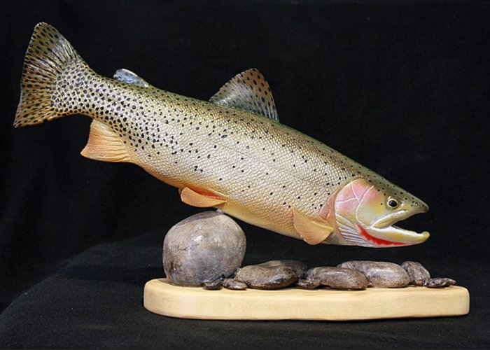 Salmon Greeting Card featuring the sculpture Cutthroat Trout On The Rocks by Eric Knowlton