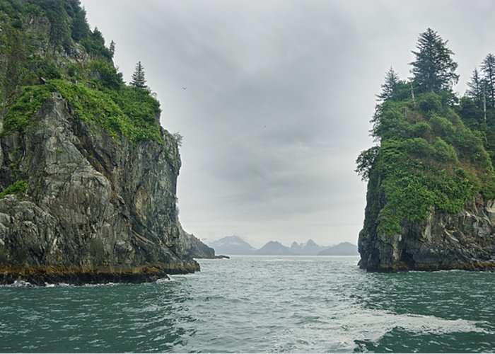 Color Image Greeting Card featuring the photograph Monoliths In Aialik Cape On A Foggy by James Forte