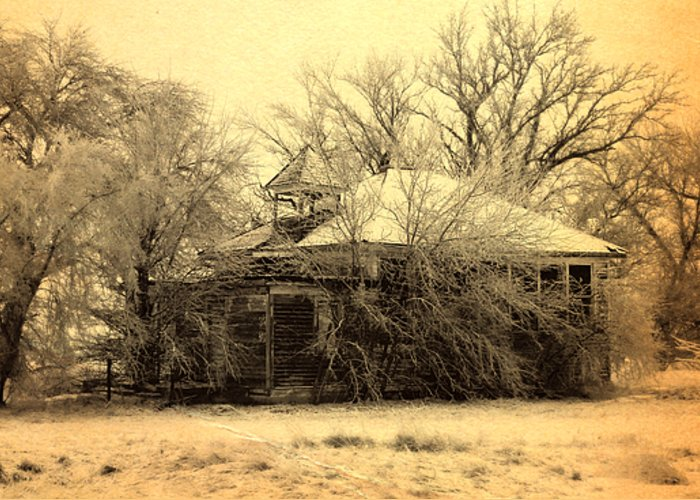 School Greeting Card featuring the photograph Old School House by Julie Hamilton