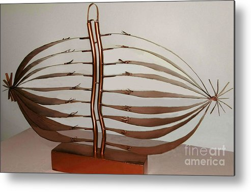 Mitotic Spindle Metal Print featuring the mixed media Mitotic Spindle by Franco Divi