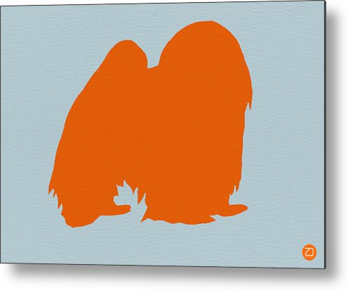 Japanese Chin Metal Print featuring the photograph Japanese Chin Orange by Naxart Studio