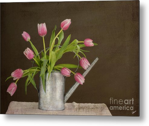 Tulips Metal Print featuring the photograph Tulip Bouquet by Alana Ranney