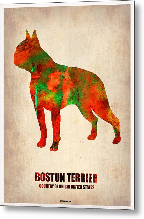 Boston Terrier Metal Print featuring the painting Boston Terrier Poster by Naxart Studio