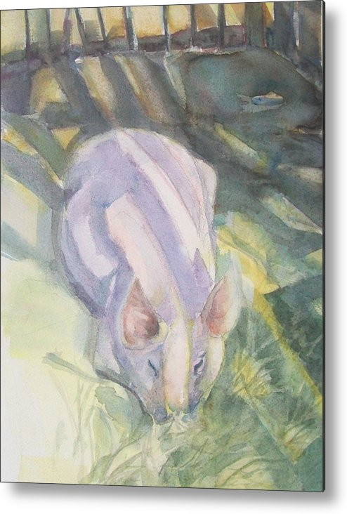Farm Animals Metal Print featuring the painting Ode To A Pig by Grace Keown
