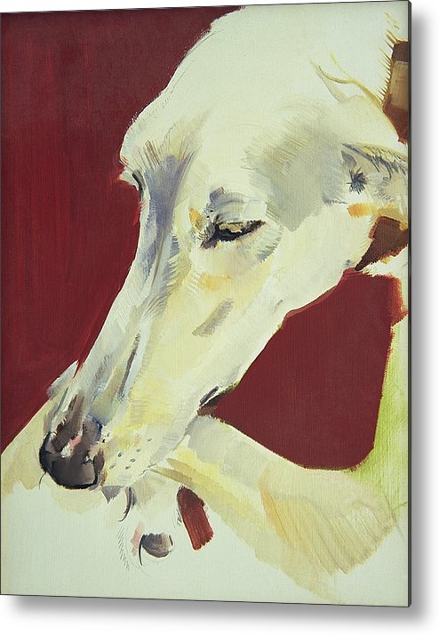 Dog; Pet; Greyhound; Greyhound; Whippet; Animal; Docile; Washing Metal Print featuring the painting Jack Swan I by Sally Muir