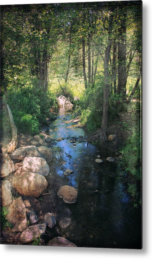 Idyllwild Metal Print featuring the photograph Until I Loved You by Laurie Search
