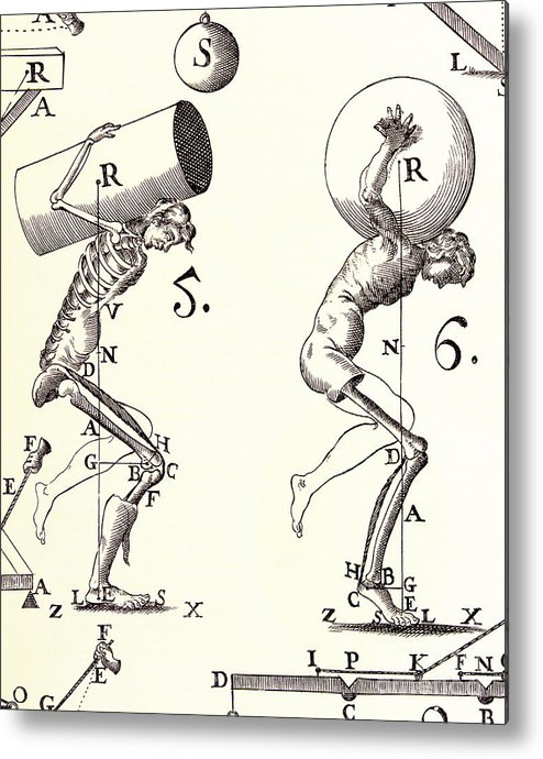 Anatomy Metal Print featuring the photograph Biomechanics by Science Source
