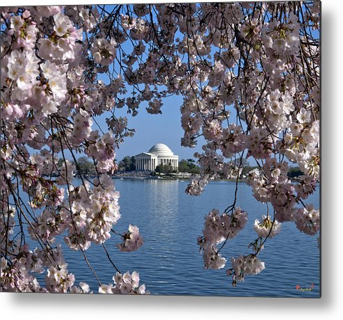 Washington D.c. Metal Print featuring the photograph Jefferson Memorial On The Tidal Basin Ds051 by Gerry Gantt
