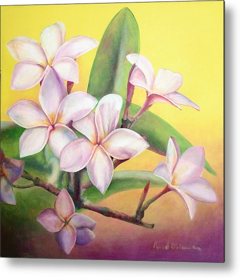 Floral Painting Metal Print featuring the painting Frangipanier by Muriel Dolemieux