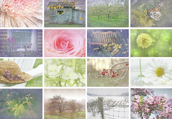 Abstract Poster featuring the photograph Collage Of Seasonal Images With Vintage Look by Sandra Cunningham
