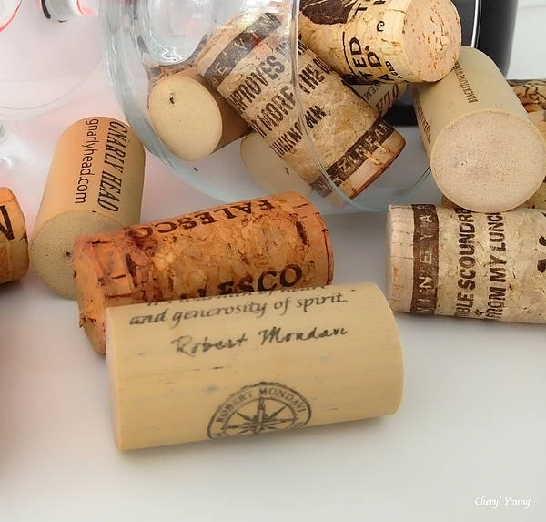 Wine Corks Poster featuring the photograph Corks by Cheryl Young