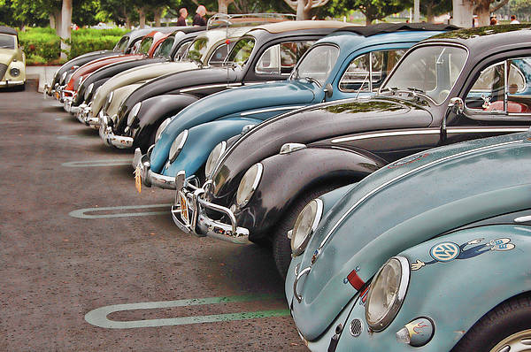 Vw Print featuring the photograph Bugs by Bill Dutting
