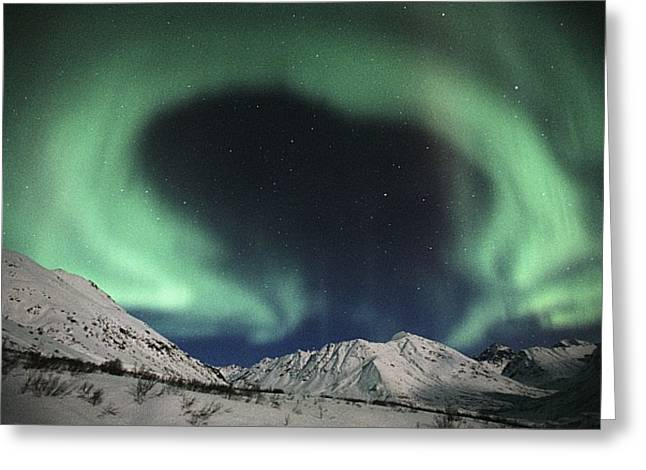 Northern Lights Talkeetna Mtns @ Greeting Card by Calvin Hall