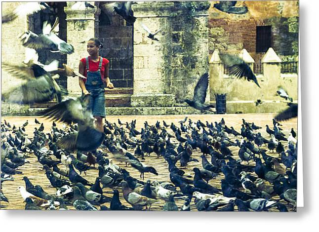 Geographic Location Greeting Cards - Feeding Pigeons Greeting Card by Elena Liachenko