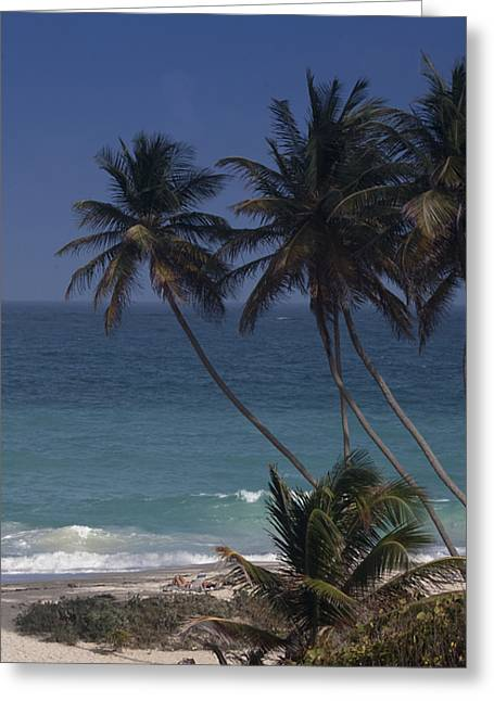 Bottom Greeting Cards - Barbados Beach Greeting Card by Andrew Soundarajan