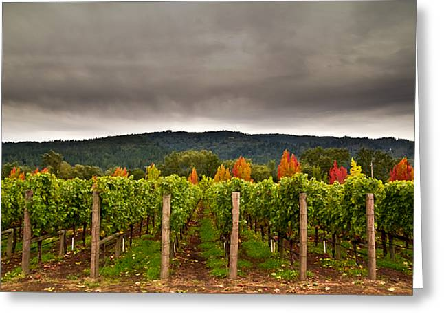 Napa Valley Greeting Cards - Estate Greeting Card by Ryan Weddle