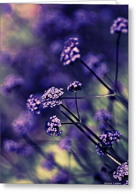 Artography Greeting Cards - Lavender Garden I Greeting Card by Jayne Logan Intveld