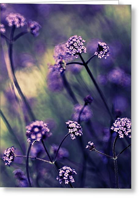 Artography Greeting Cards - Lavender Garden III Greeting Card by Jayne Logan Intveld