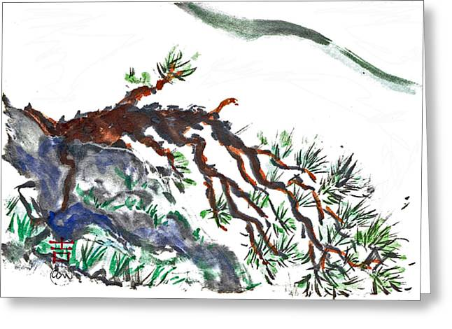Centering Greeting Cards - Mountain Pine Greeting Card by Ellen Miffitt