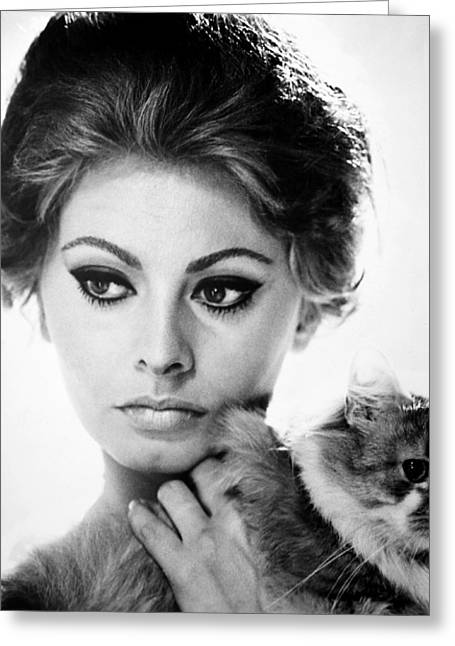 Sophia Loren (1934-  ) Greeting Card by Granger
