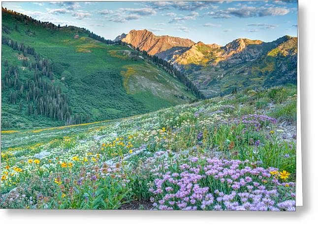 Spectacular Greeting Cards - Wasatch Mountains Utah Greeting Card by Utah Images