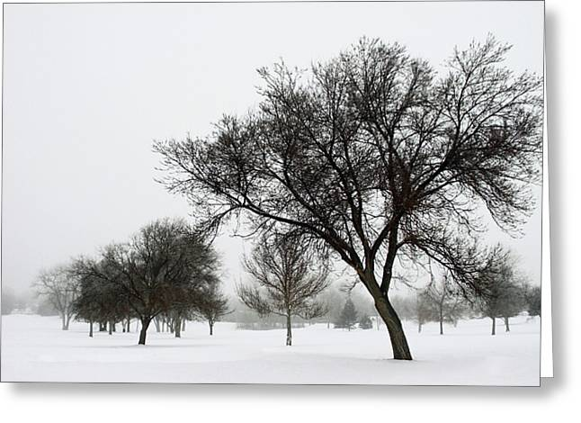 Snowy Day Greeting Cards - A Winters Day Greeting Card by The Forests Edge Photography - Diane Sandoval