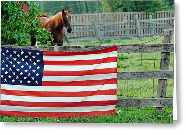 4th July Mixed Media Greeting Cards - American Horse Greeting Card by Anahi DeCanio