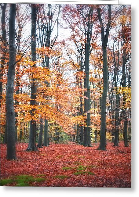 Autumn Photographs Digital Art Greeting Cards - Autumn Whispers I Greeting Card by Artecco Fine Art Photography