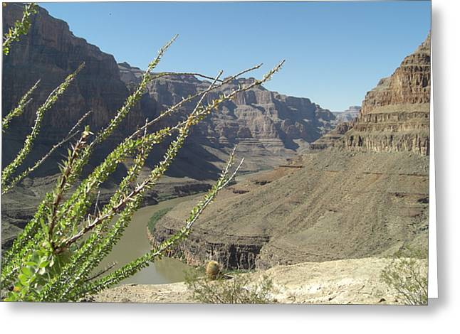 The Plateaus Digital Greeting Cards - Base Plateau at the Grand Canyon Greeting Card by Paul Jessop