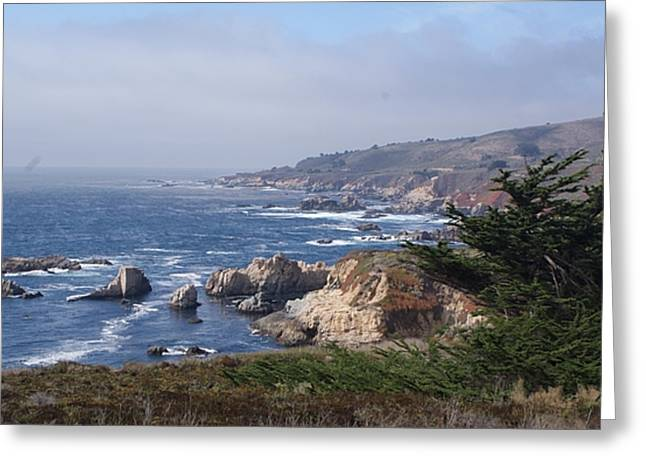 Best Sellers -  - Pch Greeting Cards - Big Sur Greeting Card by David Connaughton