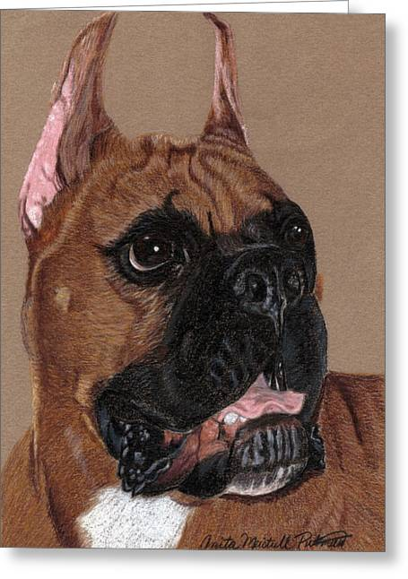 Boxer Vignette Greeting Card by Anita Putman