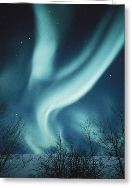 Northwest Territories Greeting Cards - Bright Bands Of Aurorae Traveling East Greeting Card by Paul Nicklen