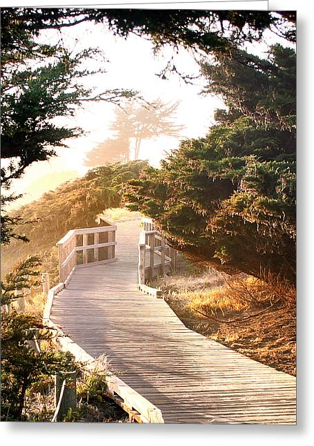 Recently Sold -  - Cambria Greeting Cards - Cambria Moonstone Walk Greeting Card by Michael Rock
