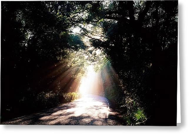 Illuminates Greeting Cards - Country Road, Kenmare, Co Kerry, Ireland Greeting Card by The Irish Image Collection