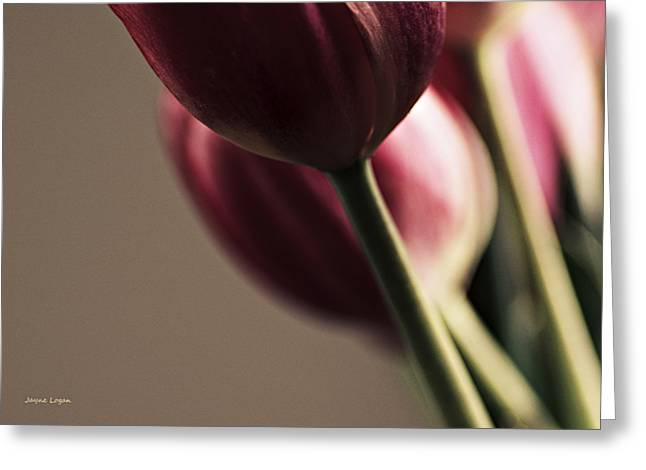 Fine Dining Canvases Greeting Cards - Dinner is Served Tulips Greeting Card by Jayne Logan Intveld