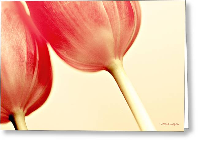 Artography Greeting Cards - Friendship Tulips Greeting Card by Jayne Logan Intveld