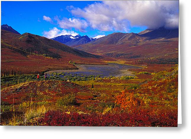 Mountain Valley Greeting Cards - Hikers In A Valley Blooming With Autumn Greeting Card by Nick Norman