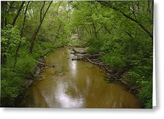 River Jewelry Greeting Cards - Lazy Creek Greeting Card by Rob  Parker