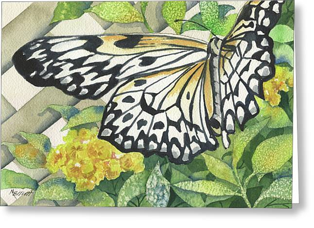Butterflies Paintings Greeting Cards - Love is Like a Butterfly Greeting Card by Marsha Elliott