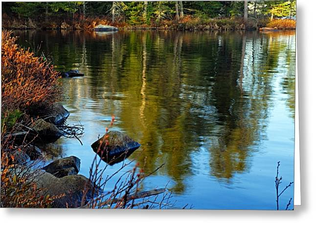 Morning Reflections On Chad Lake Greeting Card by Larry Ricker