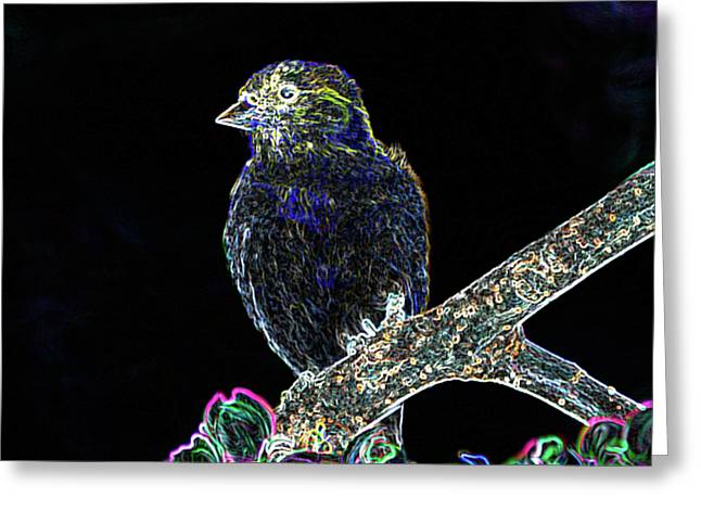 Goldfinch Digital Art Greeting Cards - Neon Goldfinch Greeting Card by Betty LaRue