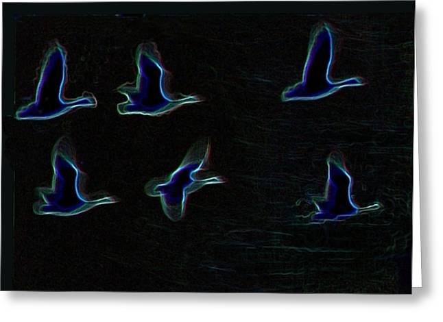Wild Goose Greeting Cards - Night Flight 2 Greeting Card by John Foote