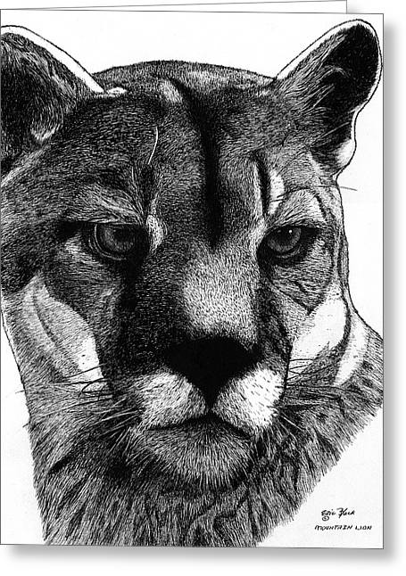 Wild Life Drawings Greeting Cards - Old Cougar Greeting Card by Eric Black
