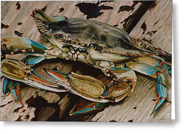Crabs Greeting Cards - Portrait of a Blue Crab Greeting Card by Rob Dreyer AFC