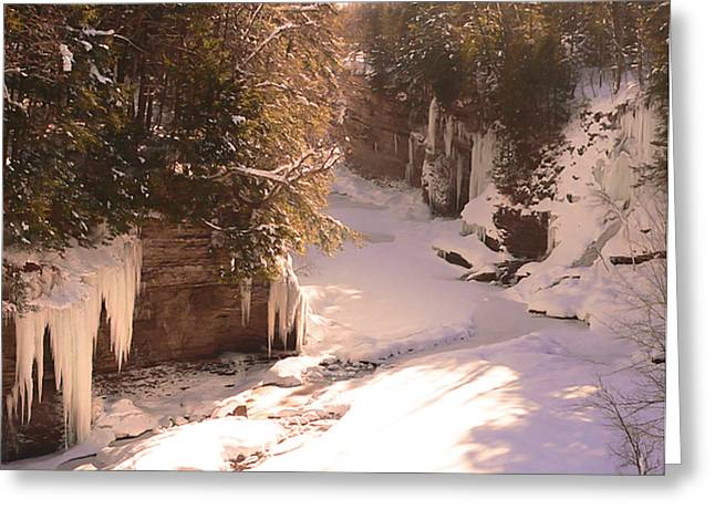 Best Sellers -  - Prospects Greeting Cards - Prospect Gorge - Sunlight and Shadows Greeting Card by Pamela Underhill Karaz