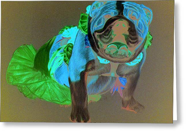 Bulls Pastels Greeting Cards - Putting on the Dog Greeting Card by Deb LaFogg-Docherty