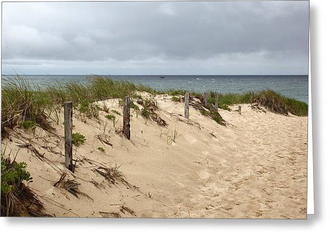 Race Point Greeting Cards - Race Point Beach Provincetown Massachusetts Greeting Card by Michelle Wiarda