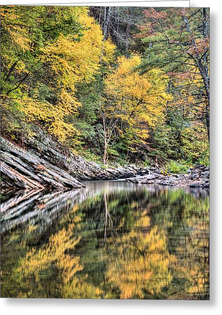 Fishing Creek Greeting Cards - Reflections of Natural Color Greeting Card by JC Findley