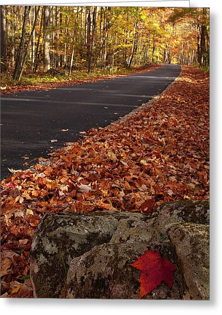 North Fork Greeting Cards - Roaring Fork Motor Trail in Autumn Greeting Card by Andrew Soundarajan