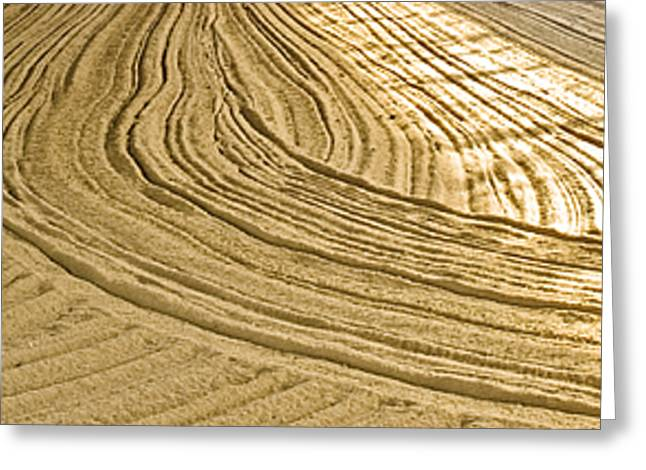 Sand Patterns Greeting Cards - Sandesigns Greeting Card by Jim DeLillo